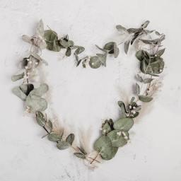 5 Valentine's Day Ideas For Maximum Love At Minimum Cost